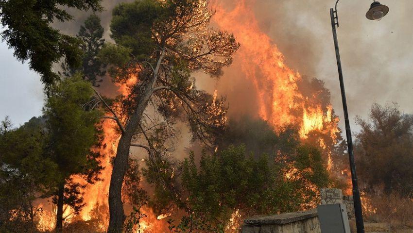 فيديو| لبنان يلملم آثار الحرائق المرعبة.. تعرف على الخسائر