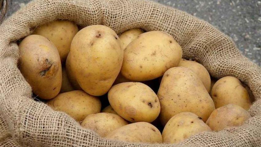 الحكومة تعلن فتح الأسواق التركية أمام البطاطس المصرية