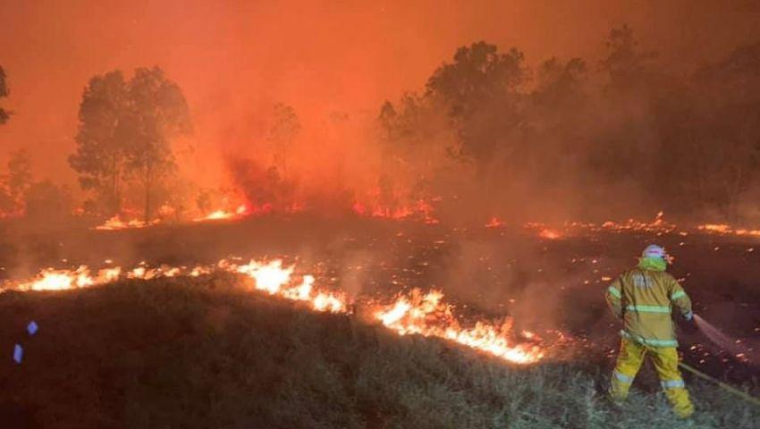 بالصور| حرائق الغابات تغلق مئات المدارس والطرق في أستراليا
