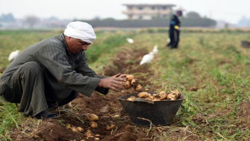 استخدام مياه الصرف فى الزراعة.. هل يأكل المصريون من «التواليت»؟