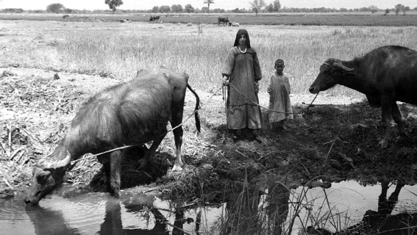 «أيام لا تُنسى».. تفاصيل الحياة في الريف وحكايات العمدة مع الفلاحين