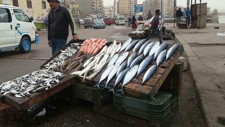 فيديو| ليلة العيد.. أسعار الأسماك واللحوم والدواجن الاثنين 29 رمضان