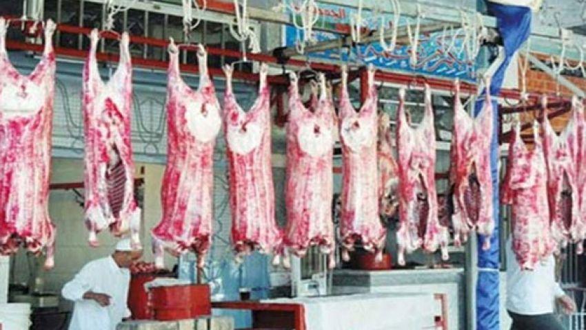 شعبة اللحوم: استقرار أسعار اللحوم عند 70 جنيها