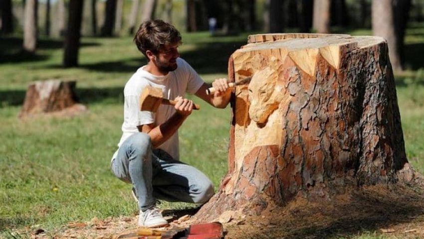 بالصور| نحات يحولجذوع الأشجار إلى لوحات فنية