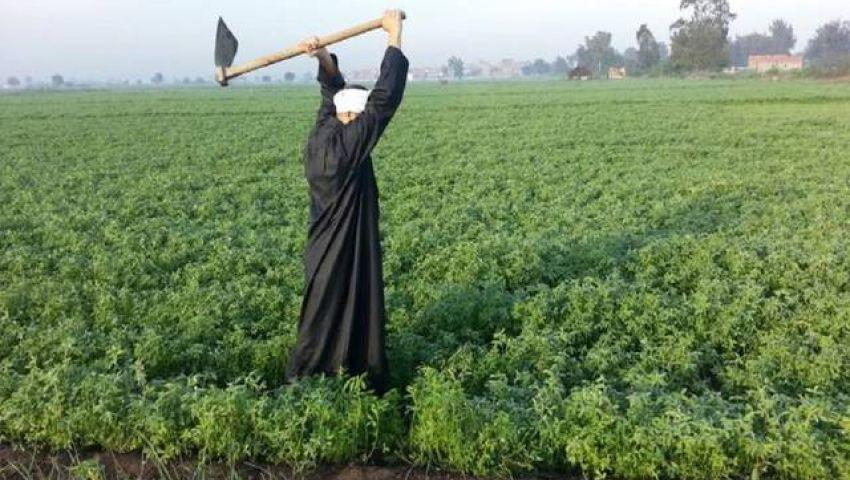 يستفيد منه 5.7 مليون مزارع.. تعرف على موعد تطبيق كارت الفلاح رسميا