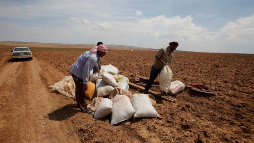 فويس أوف أمريكا: نيران داعش تلتهم محاصيل الأكراد في العراق