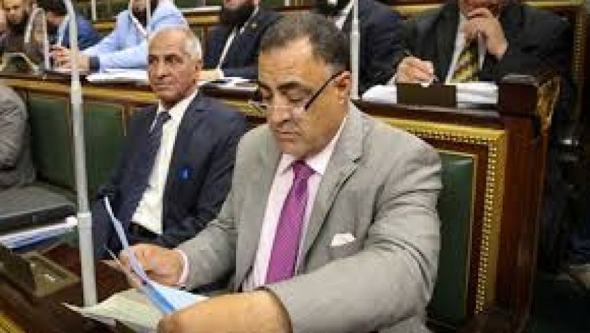 فيديو.. نائبة: لن نتنازل عن إسقاط عضوية إلهامي عجينة