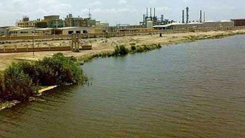 محافظ الإسكندرية يأمر بتشكيل لجنة فنية لحل مشاكل بحيرة مريوط