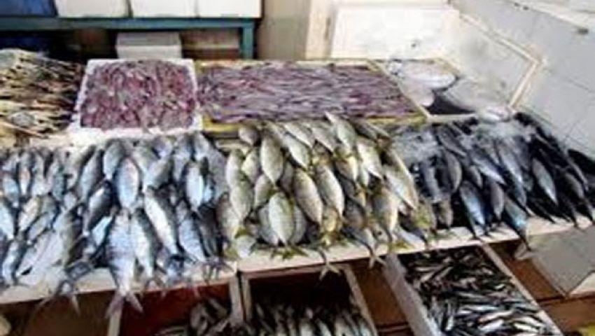 تاجر: مزارع كفر الشيخ وراء اشتعال أسعار الأسماك