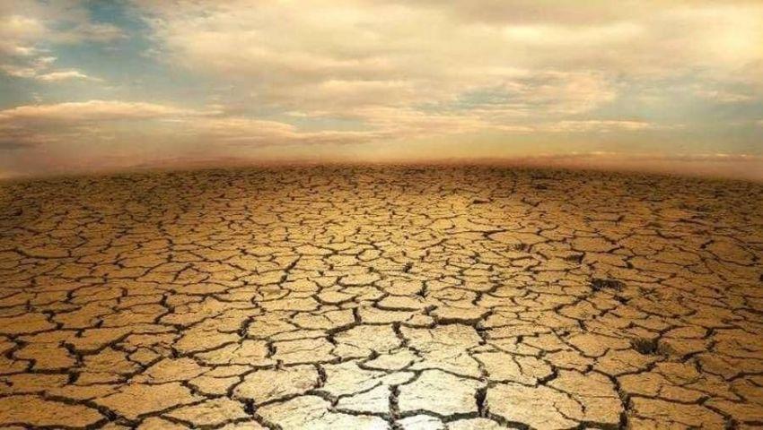 تقرير أممي: العالم مقبل على أزمة غذاء.. والزراعة: نسعى لمواجهة الأزمة