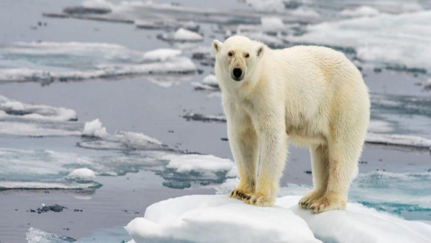 لن تختفي.. التغيرات المناخية «تزداد خطورة مع كل دقيقة تمر»