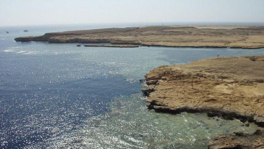 البيئة تنفي بيع محمية نبق شرم الشيخ