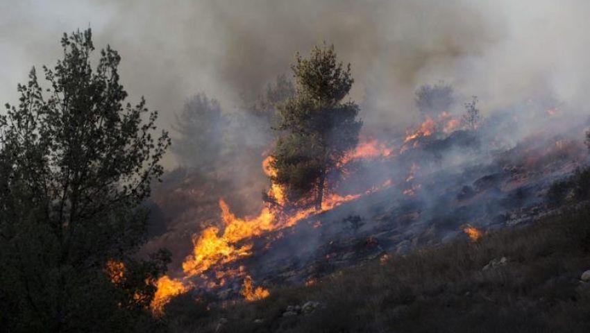 جيروزاليم بوست: من غزة للعراق.. الحرائق سلاح جديد لداعش وحماس