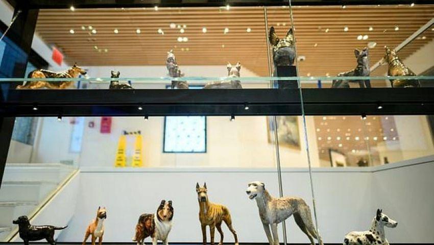 في أسبوع «وستمنستر» الأمريكي .. افتتاح أول متحف للكلاب