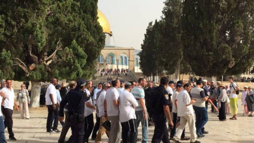 اقتحامات جديدة للأقصى.. 116 مستوطنًا يدنسون القدس