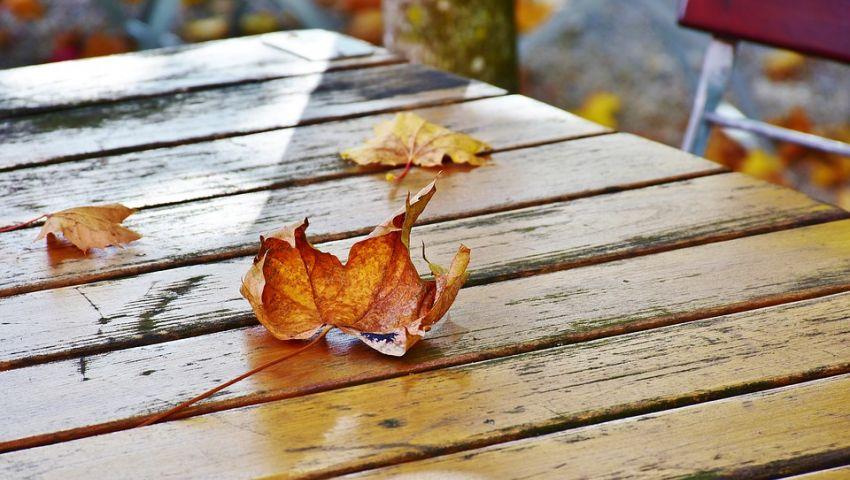نصائح هامة للمواطنين فى فصل الخريف.. تعرف عليها