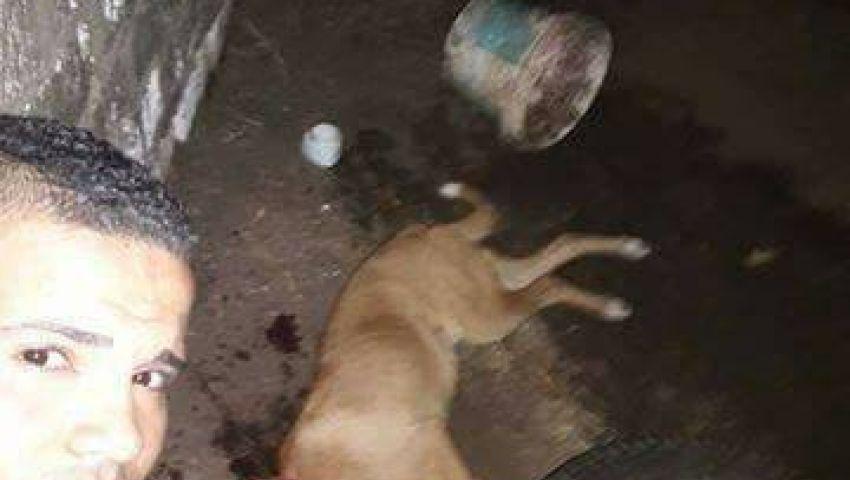 شاهد.. شاب يفتخر بذبحه كلبًا بطريقة وحشية: عايشنها بالإجرام
