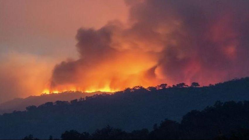 الحرائق تلتهم استراليا.. والسلطات تعلن حالة الطوارئ في ولايتين