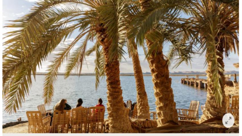 بالصور.. «فيلت» الألمانية: واحة سيوة «جنة صغيرة» في مصر