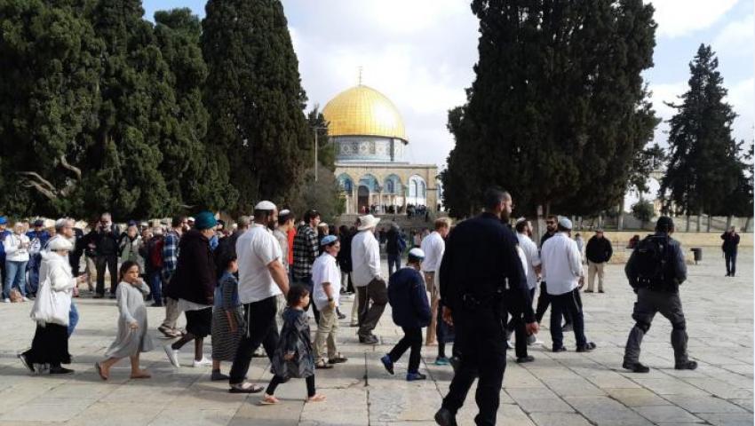 اقتحامات متكررة للمستوطنين.. هكذا يدنس الاحتلال القدس
