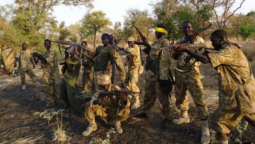الجبهة الثورية السودانية تعلن توحدها: الهادي إدريس رئيسًا