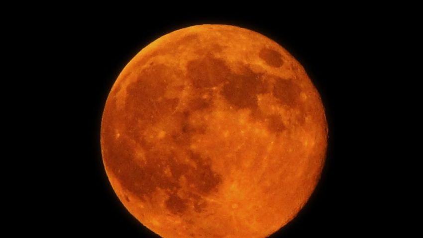 قمر الحصاد.. العالم على موعد مع ظاهرة فلكية مساء اليوم