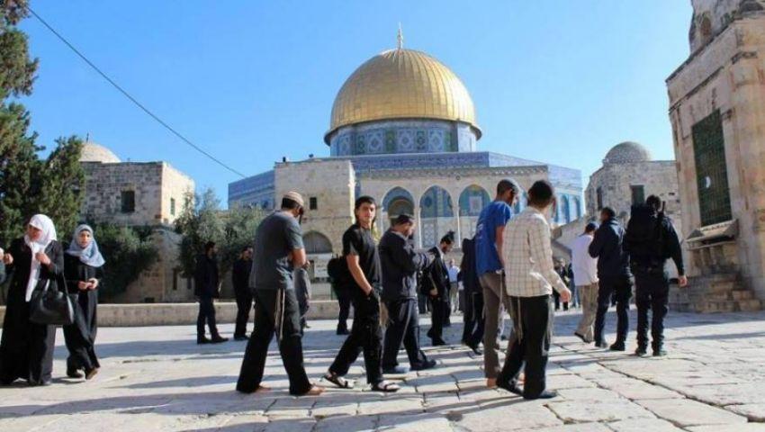 لليوم الثاني على التوالي.. مستوطنون يقتحمون المسجد الأقصى