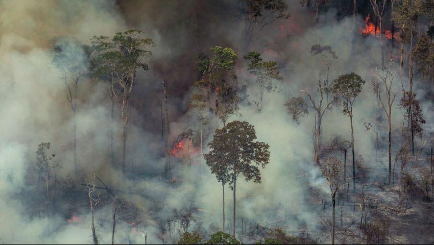 رئيس كولومبيا يتعهد بزراعة 180 مليون شجرة بمناطق الأمازون