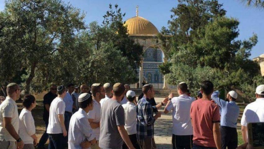 تدنيس جديد للقدس.. 88 مستوطنًا يقتحمون المسجد الأقصى