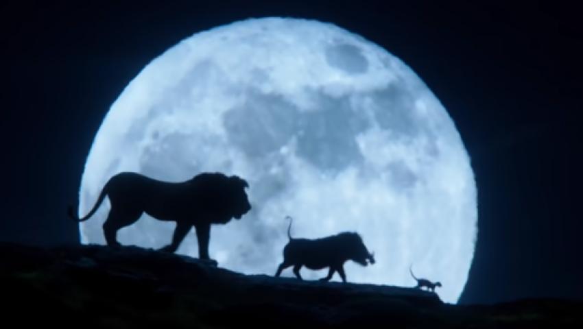 بالفيديو| تيمون وبومبا  في البرومو الجديد لـ «The Lion King»