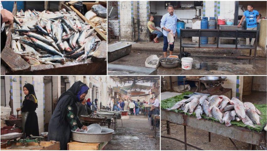 ارتفاع أسعار الأسماك والدواجن| تجار: بنهش ومفيش زباين.. ومواطنون: «بنتفرج بس»