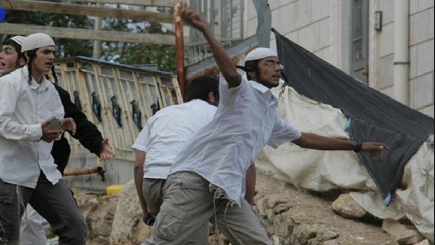 في أسبوع.. هكذا تضاعفت جرائم المستوطنين ضد الفلسطينيين