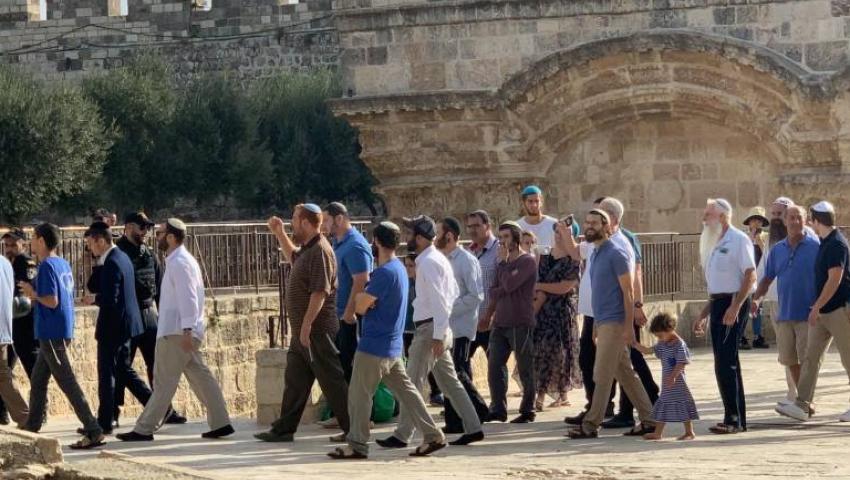 صور  اقتحامات واسعة للمسجد الأقصى.. الصهاينة يدنسون مسرى النبي