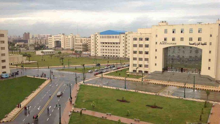 «كفر الشيخ» الأولى محليًا وأفريقيًافي تصنيف الجامعات الخضراء