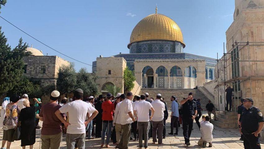 فيديو| أرقام مفزعة تفضح الاحتلال.. أبرز اقتحامات للأقصى في 10 أيام