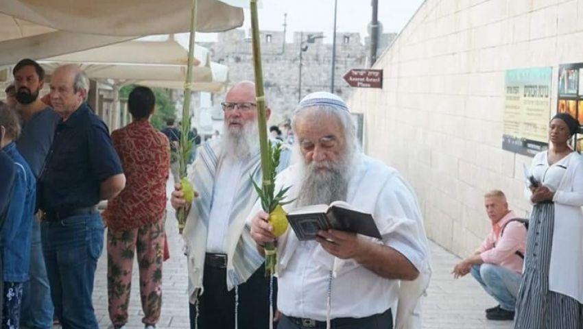 لليوم الثالث على التوالي.. لماذا يكثف الصهاينة اقتحاماتهم للأقصى في «أيام العرش»؟
